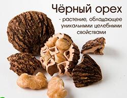 Черный орех как лекарство