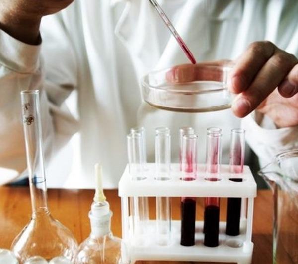 Анализ крови на гельминтов