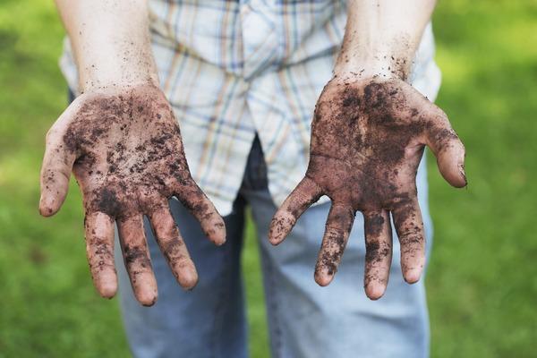 Грязные руки - источник заражения гельминтами