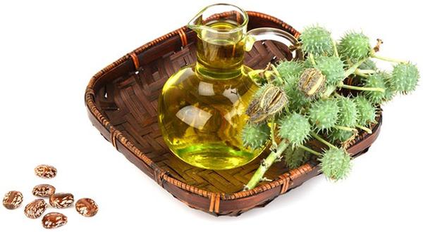 Касторовое масло используется как слабительное