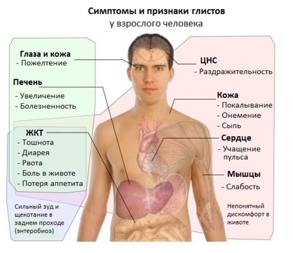 Возможные симптомы заражения