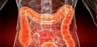 Гельминты в кишечнике