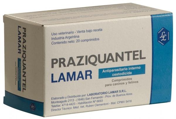 Празиквантел - лекарство при трематодозах