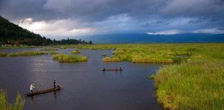 Заражение шистосомами в озере