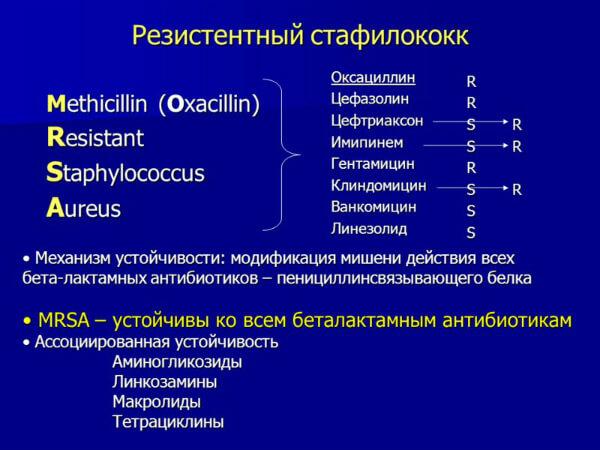 Резистентность стафилококка
