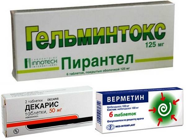 Лечение паразитозов