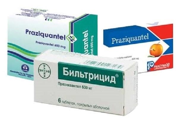 Празиквантел - доступный и эффективный препарат от ленточных червей