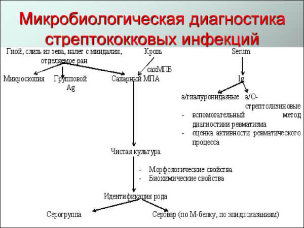 Диагностика при стрептококковых инфекциях