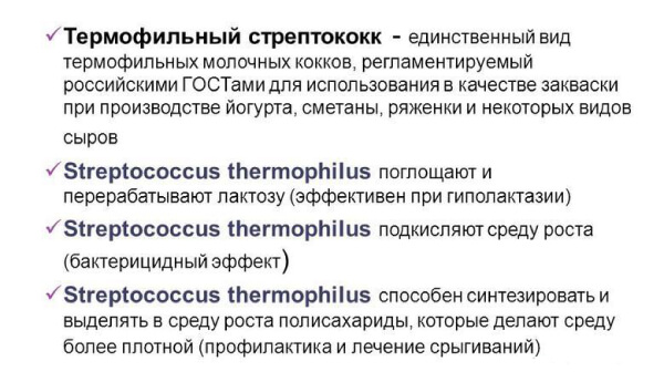Бифидобактерии стрептококки
