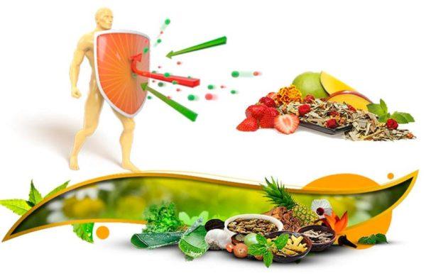 Укрепление иммунитета при саркоптозе