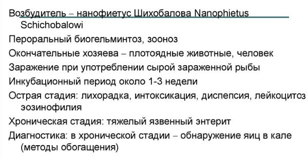 Нанофиетоз у человека