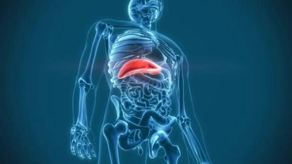 Печеночный капилляриоз