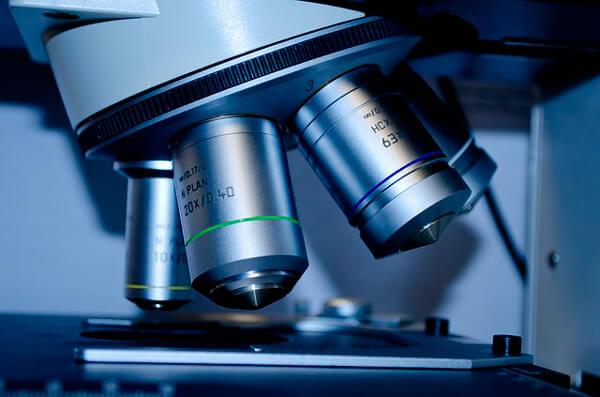 Лучший метод выявления лямблиоза: анализ кала на лямблии