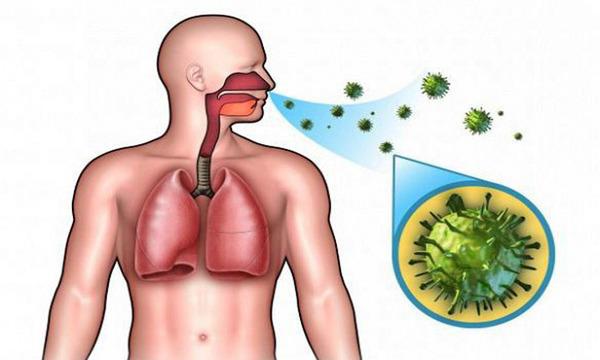 Инфекции при гельминтозе