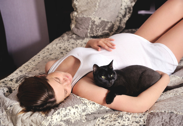 Беременным лучше избегать кошек