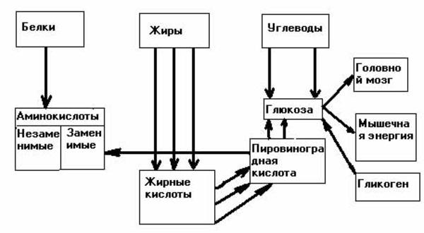 Нарушение обменных процессов