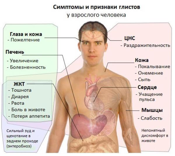 Признаки поражения организма гельминтами