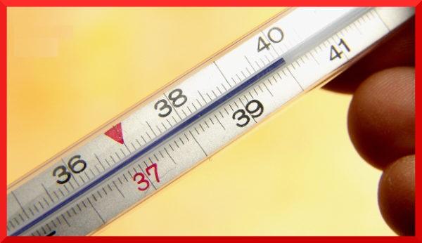 Высокая температура в начале заболевания