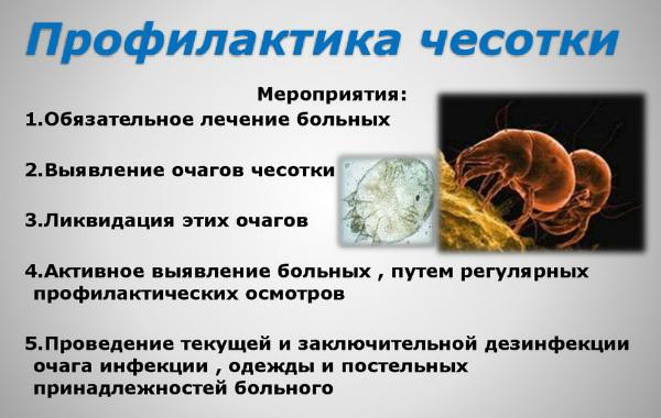 Чесотка: противоэпидемические мероприятия