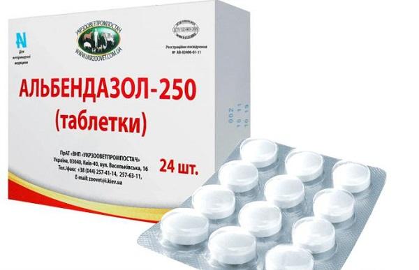Альбендазол при глистных инвазиях