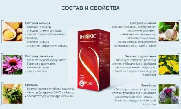 Состав лекарства Интоксик