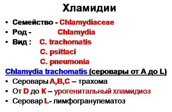Виды хламидиоза